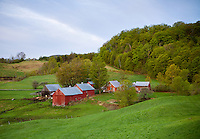 Early Spring morning on the Jenne Farm in South Woodstock, VT.