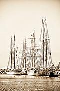 Tall Ships at Dana Point harbor in sepia