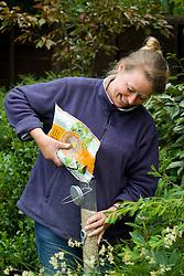 Alison Hoghton filling bird feeder