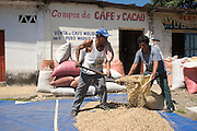 """11 NOVEMBER  2004 - TAPACHULA, CHIAPAS MEXICO: Workers scoop up dried coffee beans on the sidewalk in front of a """"coyote's"""" storefront in Tapachula, Chiapas, Mexico. Coyotes are the middlemen in small scale Mexican coffee farming. They buy coffee from small farm owners and resell it to the companies that ultimately roast, grind and package it. Most of the coyotes deal in lower grade coffees, high grade coffee is sold on a contract basis by farmers and plantation owners directly to roasters. World coffee prices have been depressed for years by over production in Brazil and Vietnam and thousands of coffee farmers in Mexico and Guatemala have been forced to emigrate to the US as undocumented workers because of the crisis in the coffee industry. Many of the plantations in Mexico and Guatemala have been forced to closed because of the crisis. PHOTO BY JACK KURTZ"""