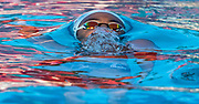 A swimmer comes up from the water at the Rose Bowl Aquatic Center on April 25, 2019 in Pasadena, California.