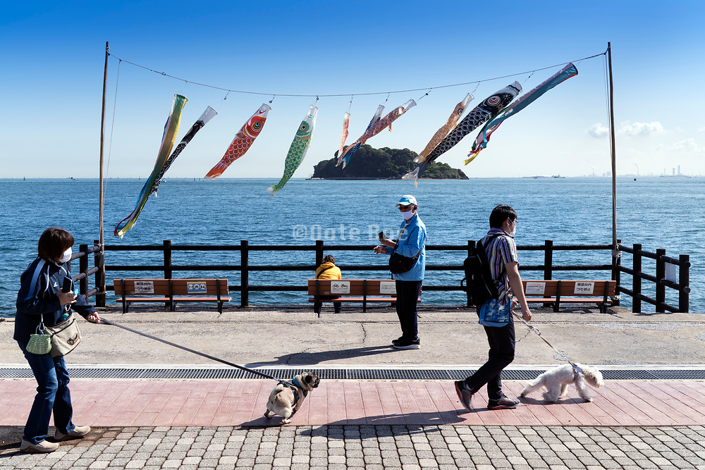 people walking by Tokyo bay water front with Koinobori fluttering in the wind Yokozuka Japan