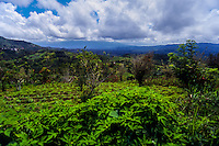 Indonesia, Sulawesi, Rurukan. Looking towards Bitung and the Lembeh Strait from the Rurukan area not far from Tomohon in the Minahasa highland.