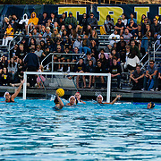 04/20/2018 - Waterpolo v UCSD - Harper Cup