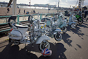 Vespa scooters on display on Brighton's seafront esplanade on Bank Holiday weekend.