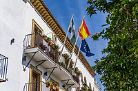 Town Hall, Marbella, Spain with National, Provincial & European flags, October, 2019, 201910041696<br /><br />Copyright Image from Victor Patterson, Belfast, UK<br />t: +44 28 9066 1296 <br />(from Rep of Ireland 048 9066 1296) <br />m: +44 7802 353836 <br />victorpattersonbelfast@gmail.com <br />www.victorpatterson.com<br /><br />Please see my Terms and Conditions of Use at https://www.victorpatterson.com/page2 <br /><br />It is IMPORTANT that you familiarise yourself with them.<br /><br />Images used on the Internet incur an additional cost and must be visibly watermarked i.e. © Victor Patterson within the body of the image and copyright metadata must not be deleted. Images used on the Internet have a size restriction of 4kbs and are chargeable at rates available at victorpatterson.com.<br /><br />This image is only available for the use of the download recipient i.e. television station, newspaper, magazine, book publisher, etc, and must not be passed on to any third party. It is also downloaded on condition that each and every usage is notified within 7 days to victorpattersonbelfast@gmail.com<br /><br />The right of Victor Patterson to be identified as the author is asserted in accordance with The Copyright Designs And Patents Act (1988). All moral rights are asserted.