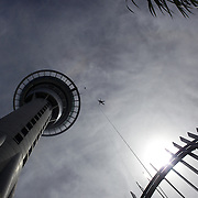 A participant tin action at the Auckland Sky tower sky jump. Auckland's Sky Tower, at 328 metres, it is the tallest man-made structure in New Zealand and offers breathtaking views for up to 80 kilometres in every direction and also includes the sky jump from near the top of the building. Auckland, North Island. New Zealand, 5th November 2010. Photo Tim Clayton.