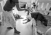 Sara Moran assists Pecas back into his crib. Milagros Perrunos shelter, Lima, Peru.