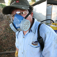 All use of chemicals on the Los Pinos coop farm is strictly controlled and health and safety procedures are adhered to. Cooperativa Los Pinos is a certified Fairtrade producer based in El Salvador.