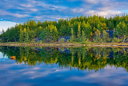 Reflection on northern lake. Adjacent Regional Road 80 (Old Highway 69). <br />Greater Sudbury<br />Ontario<br />Canada
