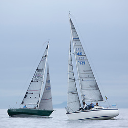 Day 1 Scottish Series, SAILING, Scotland.<br /> <br /> Class 3, Farr E Nuf, Farr 727, GBR7029, Lady Ex, Extrovert 22, GBR6305C<br /> <br /> The Scottish Series, hosted by the Clyde Cruising Club is an annual series of races for sailing yachts held each spring. Normally held in Loch Fyne the event moved to three Clyde locations due to current restrictions. <br /> <br /> Light winds did not deter the racing taking place at East Patch, Inverkip and off Largs over the bank holiday weekend 28-30 May. <br /> <br /> Image Credit : Marc Turner / CCC