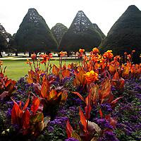Unitd Kingdom, England, Richmond upon Thames. The gardens of Hampton Court Palace,