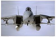 F-14A Tomcat Head-on