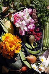 A box full of homegrown flowers; fruit and vegetables; produce from allotments,