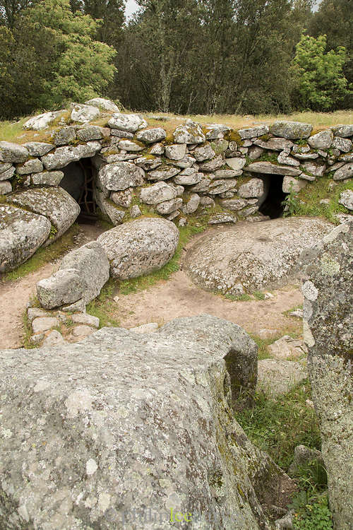 Rocks and earth structure at archaeological site, Cuccuruzzu, Corsica, France