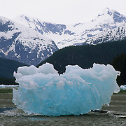 Chunks of ice from a glacier in southeast Alaska.