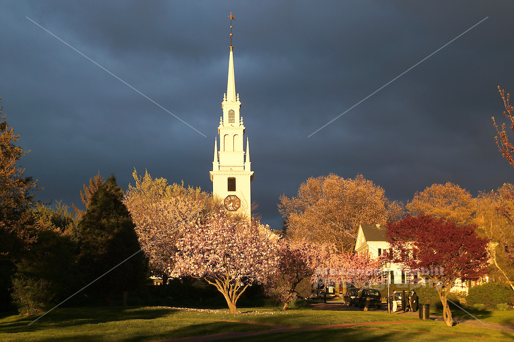 USA - Newport, RI - Spring bloom on  trees of Queen anne square wtih trinity church in back ground in Downtown just after a storm has passed.