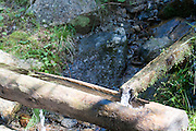 Wooden water ducts transfers water for irrigation