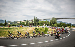 Peloton leaded by Team Dimension Data at Crni Kal during Stage 1 of 24th Tour of Slovenia 2017 / Tour de Slovenie from Koper to Kocevje (159,4 km) cycling race on June 15, 2017 in Slovenia. Photo by Vid Ponikvar / Sportida