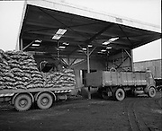 Bord na Mona Littleton, Tipperary.<br /> 1973.<br /> 19.02.1973.<br /> 02.19.1973.<br /> 19th February 1973.<br /> <br /> Images of the Littleton Briquette Factory, peat bog and several members of staff who work there. Littleton is situated  close to Thurles in Co Tipperary.