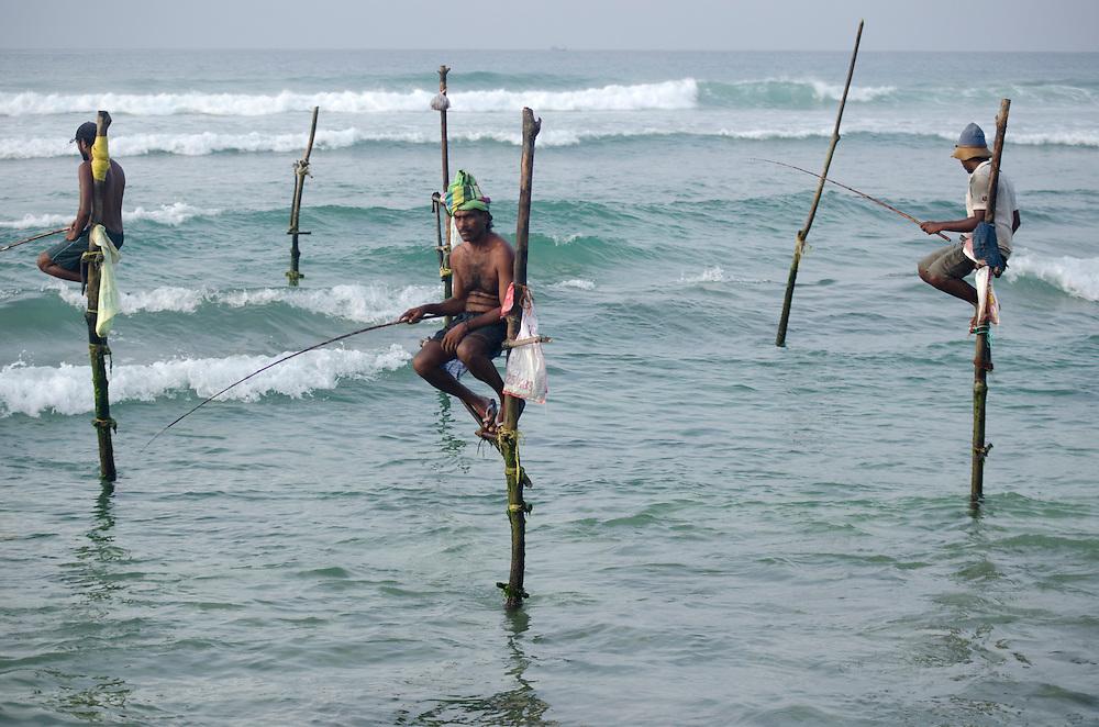 Stilt fishermen near Weligama, Sri Lanka