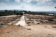 Israel, Lower Galilee, Zippori National Park The city of Zippori (Sepphoris) A Roman Byzantine period city with an abundance of mosaics Mosaic floor in the Cardo