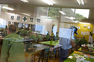 Reflection of trees on a nearby hillside, in the window of the workroom where elderly prisoners undertake light work for 6 hours a day, in Onomichi prison, Japan. Monday, May 19th, 2008