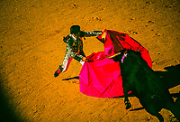 Bullfighting, Fiesta of San Fermin, Pamplona, Spain