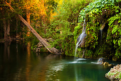 Serene Swimming Hole