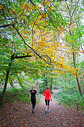 ©Licensed to London News Pictures 20/10/2020  <br /> Chislehurst, UK. Two runners on an early morning run. A grey and windy Autumnal weather day today at Scadbury Park Nature reserve in Chislehurst, London. Strom Barbara is set to hit the UK with high winds and rain tonight. Photo credit:Grant Falvey/LNP
