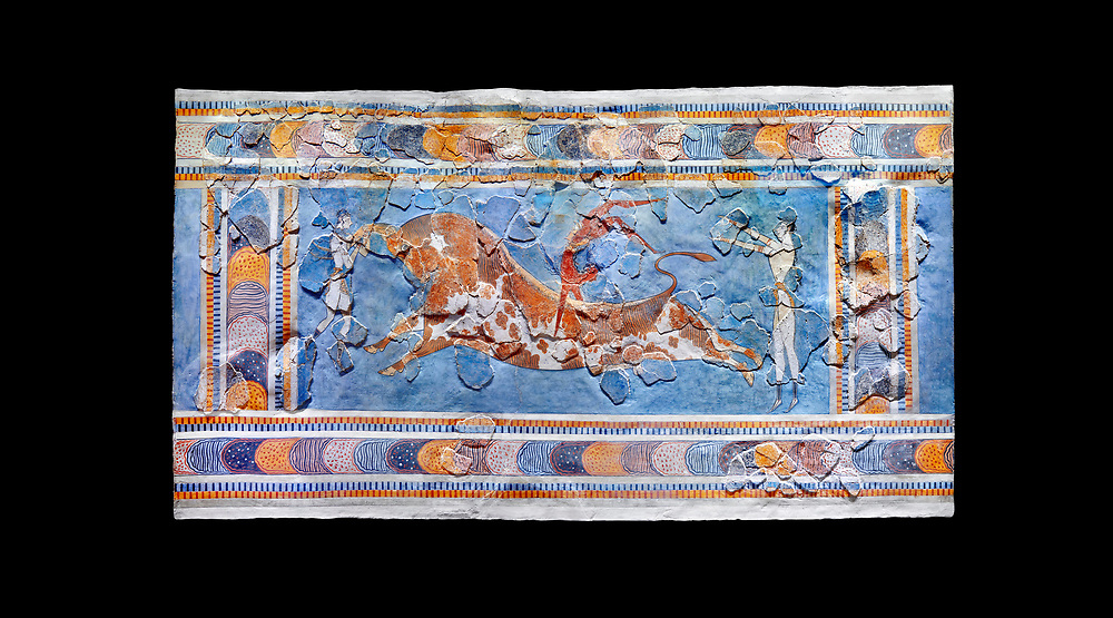 The Minoan 'Bull leaping' fresco depicting an athlete leaping over a bulls back,  Knossos-Palace, 1600-1400 BC . Heraklion Archaeological Museum., black background<br /> <br /> there are 3 participants, two white skinned women and one brown skinned man. One female athele is restraining the bull ny the horns to slow it down as the male athlete performs a backward summersault ober the bulls back. The second female athlete waits to catch the leaper.<br /> <br /> The fresco was found on the east side of the palace of Knossos together with fragments depicting different stages of bull leaping. .<br /> <br /> If you prefer to buy from our ALAMY PHOTO LIBRARY  Collection visit : https://www.alamy.com/portfolio/paul-williams-funkystock/minoan-art-artefacts.html . Type -   Heraklion   - into the LOWER SEARCH WITHIN GALLERY box. Refine search by adding background colour, place, museum etc<br /> <br /> Visit our MINOAN ART PHOTO COLLECTIONS for more photos to download  as wall art prints https://funkystock.photoshelter.com/gallery-collection/Ancient-Minoans-Art-Artefacts-Antiquities-Historic-Places-Pictures-Images-of/C0000ricT2SU_M9w