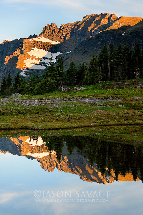 Reflection on pond near Hidden Lake, Glacier National Park.