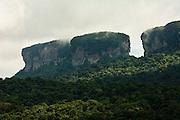 Tepuis<br /> Guiana Shield<br /> GUYANA<br /> South America