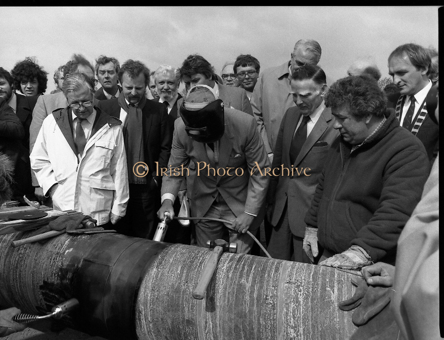 Cork / Dublin Gas Pipeline.28.04.1982.04.28.1982.28th April 1982.1982...At Brownbarn,Kingswood,Dublin the Minister for Industry and Energy, Mr Albert Reynolds T.D. performed the ceremonial first weld to officially start the project.. The 24cm diameter pipe is cleaned prior to welding.The minister takes over and cleans the pipe himself.