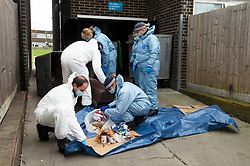 © Licensed to London News Pictures 08/04/2021. Mottingham, UK. A Met Police investigation is underway after a twenty year old woman was found dead yesterday in a flat on a south East London housing estate in Mottingham. A large number of police officers wearing forensic suits are searching the estate for evidence. A number of police cordons are in place. Photo credit:Grant Falvey/LNP