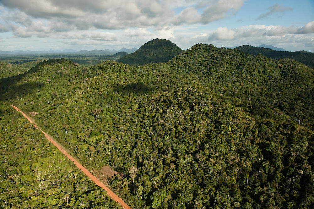 Aerial View of Rainforest & road<br />