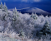Departing storm with covering of rime ice on red spruces and other vegetation, Yew Mountains, Monongahela National Forest, West Virginia.