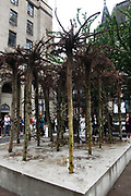 Flailing Trees, July 2007, in Manchester, United Kingdom. <br /> <br /> Flailing Trees is a piece of art by Gustav Metzger where 21 willow trees has been up-rooted and put upside down into concrete, symbolising a world turned upside down by global warming.