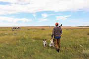 John Zeman returns to the horses with his German Shorthair Liza and a bagged sharptail.
