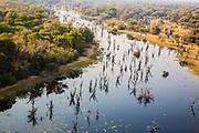 Aerial landscape of the Okavango Delta in the morning, Okavango Delta, Botswana, Africa