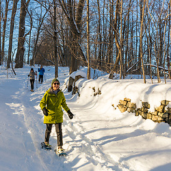 Women snowshoeing next to an old stone wall in the forest on Indian Hill in West Newbury, Massachusetts.