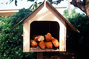 Bread in Mailbox, Tahiti, French polynesia