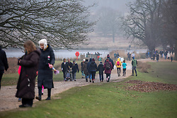 © Licensed to London News Pictures. 10/01/2021. London, UK. Members of the public enjoy a stroll in a busy Richmond Park in South west London today as health experts call for the lockdown to be made tougher as Covid-19 case continue to rise. This week, Prime Minister Boris Johnson plunged England into a 3rd lockdown as he ordered schools to close and workers to work from home as the government brings in the army to ramp up vaccinations across the country. Photo credit: Alex Lentati/LNP