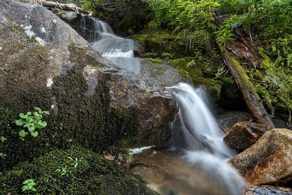 Stream in Oregon's Eagle Cap Wilderness.