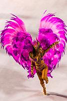 Samba dancer in the Carnaval parade of GRES Estacao Primeira de Mangueira samba school in the Sambadrome, Rio de Janeiro, Brazil.
