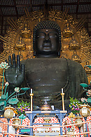 """Great Buddha at Daibutsuden,Todaiji - Todai-ji or the Eastern Great Temple in Nara - the Great Buddha Hall Daibutsuden shelters the world's largest bronze statue of the Buddha known in Japanese as Daibutsu.  The temple also serves as the Japanese headquarters of the Kegon sect of Buddhism. The temple is a listed UNESCO World Heritage Site as """"Historic Monuments of Ancient Nara"""".  Wild deer, regarded as messengers of the gods in the Shinto religion, roam the area regularly."""