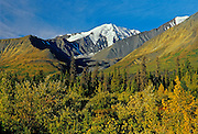 St. Elias Mountains, and the boreal forest<br /> Kluane National Park<br /> Yukon<br /> Canada