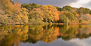 The still waters of Schoolhouse Pond reflect the autumn colors of Cape Cod.