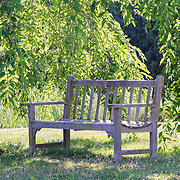 This peaceful and inviting bench was just sitting waiting for someone to enjoy the shade of the willow tree at Kripalu Institute