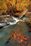 Find the angles within the frame of the spectacular Falling Water Creek in the Ozark Mountains of Arkansas